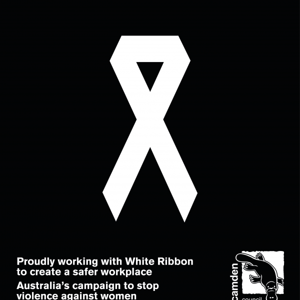 Council awarded White Ribbon Accreditation