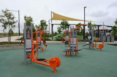 Dawson Damer Exercise Equipment