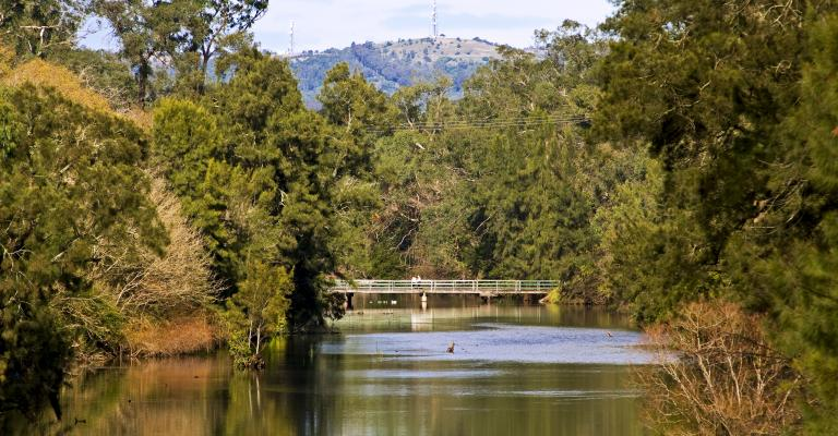 Nepean River 001